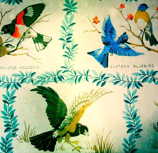 vintage bird background